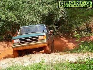 the bronc
