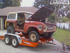 Soon-to-be-fly bronco