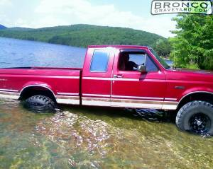 Betsy in the water