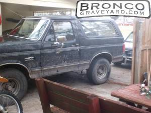 Mud on the bronco