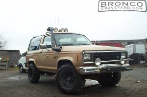 1988 bronco 2