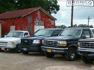 Ford family