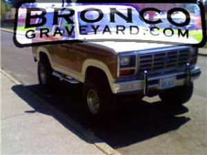 Our bronco