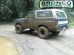 My bronco