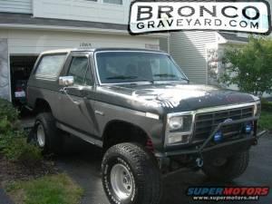 Bronco 1