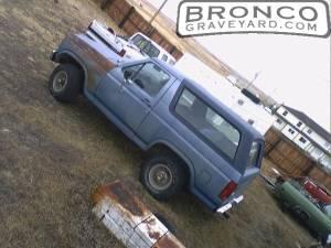 Bronco