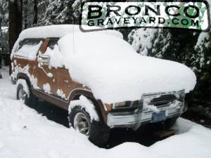 Snow bronco!!