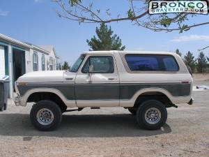 My first bronco