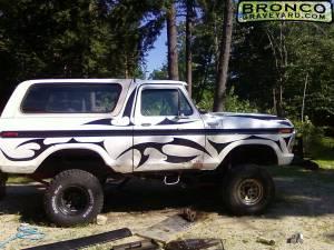 The zebra truck