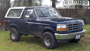 Front yard bronco