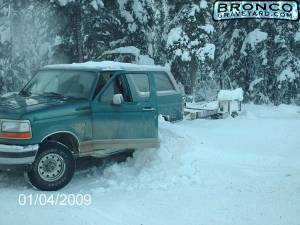 Bronco in snow