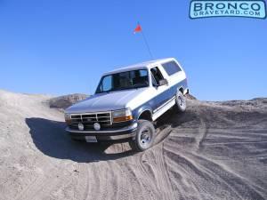 Desert bronco