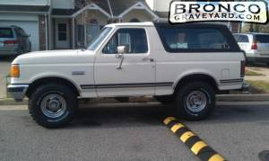 Bronco side view