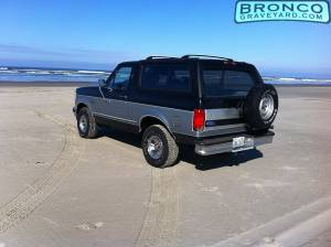 Bronco at the beach 2