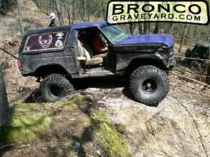 No fear bronco